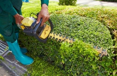 empresa jardinería jerez